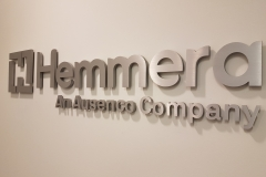 Brushed aluminium 3D cut out logo Hemmera
