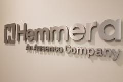 Brushed aluminium 3D cut out logo Hemmera