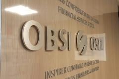 Brushed aluminium 3D letters OBSI