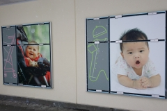 wall graphics buy buy BABY o